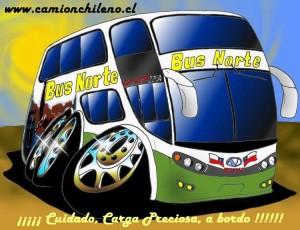 bus-norte