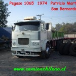 1065-pato